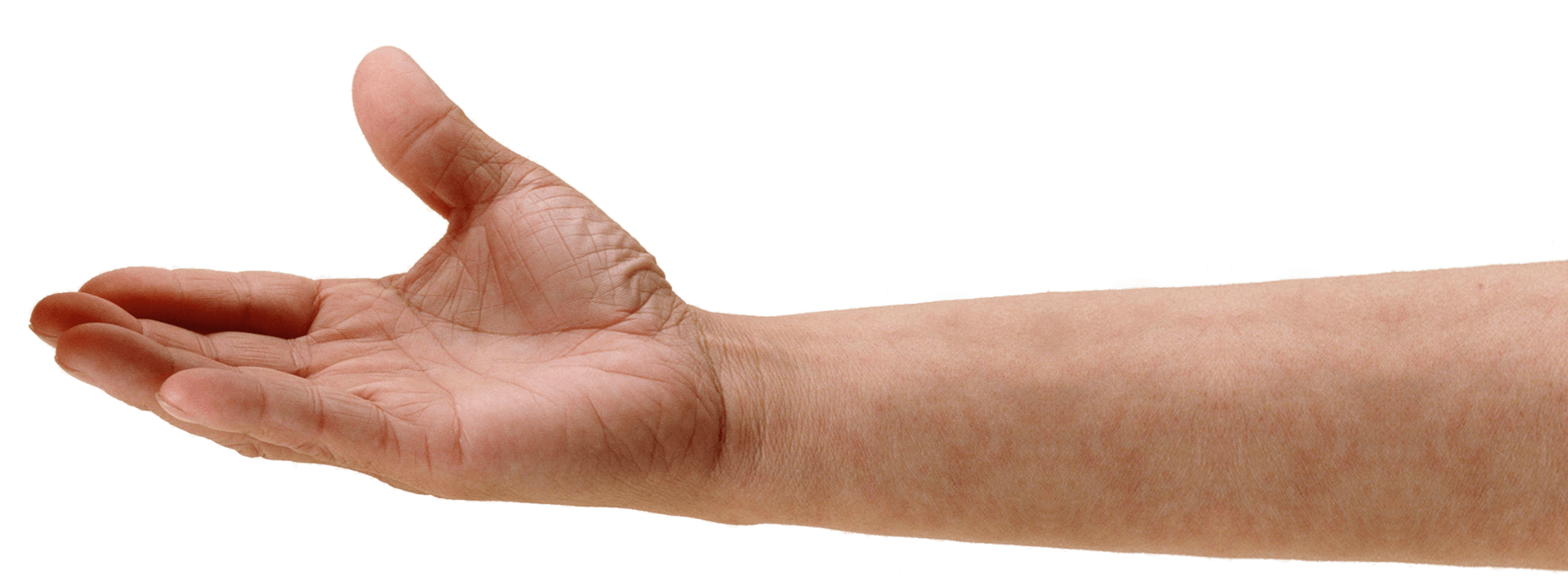 hand.png (1891×708) - Hands PNG HD