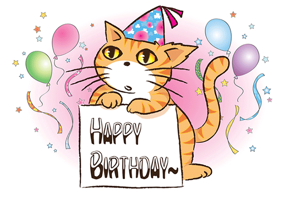 cake, cat, and happy birthday