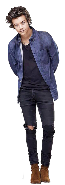 Harry Styles PNG - 58212