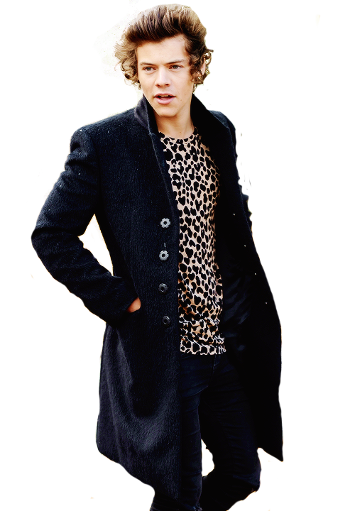 Harry Styles PNG - 58214
