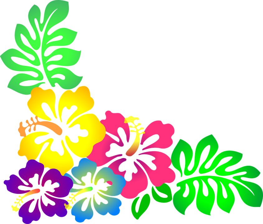 Flower, Hawaii, Hibiscus, Luau, Colorful - Hawaiian Luau PNG