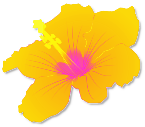 Photos of hawaiian luau clip art free flower - Hawaiian Luau PNG