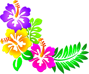 Taste of Hawaii - Hawaiian Luau PNG