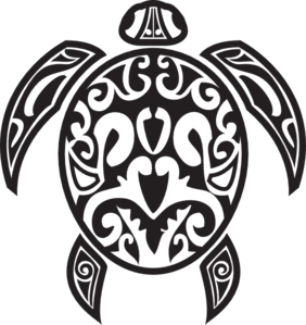 Hawaiian Turtle PNG