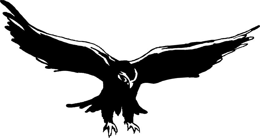 Free hawk clipart the cliparts - Hawk PNG Black And White