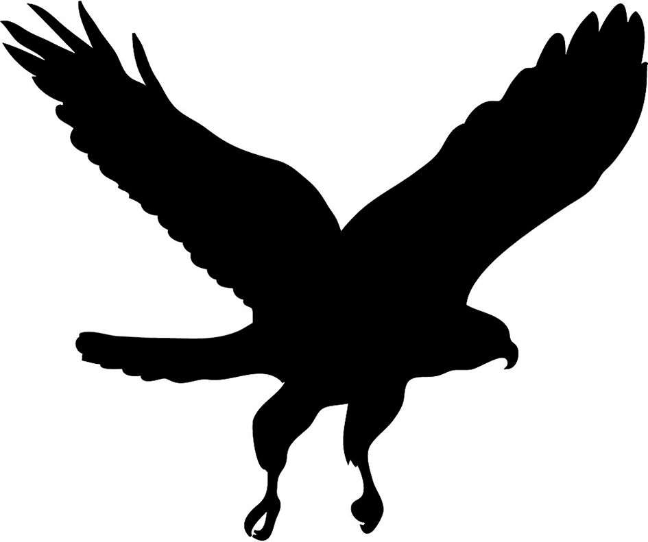 Hawk Mascot Clipart - Hawk PNG Black And White