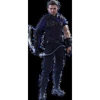 Hawkeye PNG - 20141