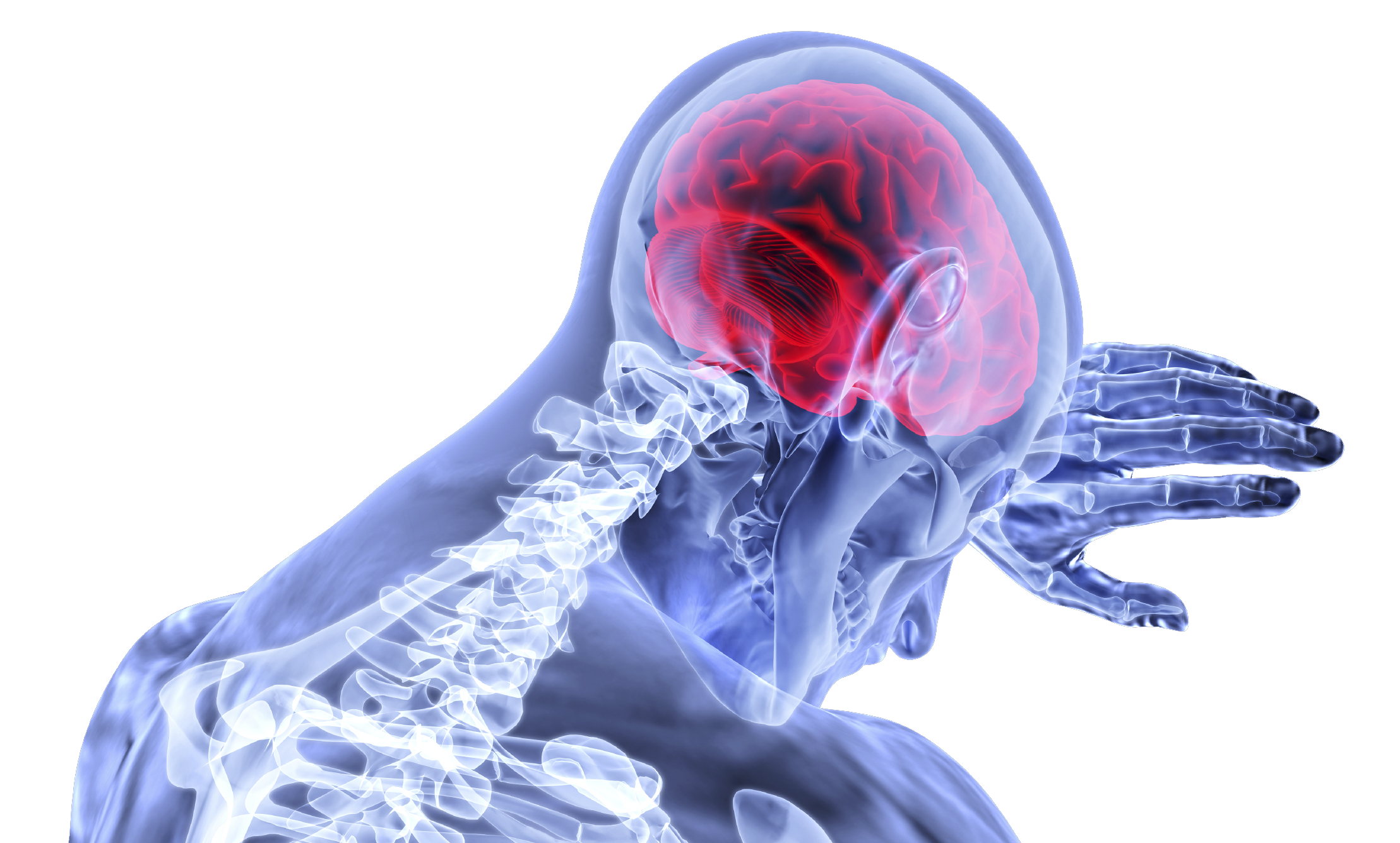head injury png concussions after traumatic brain injury incidents virginia brain injury lawyer 2218png httppluspngcomipis png 2900html daily 10 httppluspngcomimg