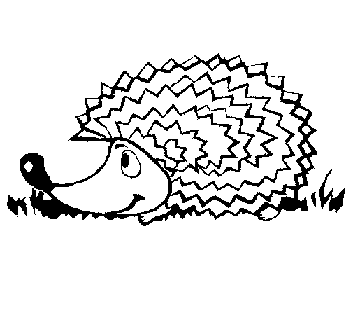 Hedgehog PNG Black And White - 48650