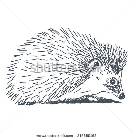 Hedgehog PNG Black And White - 48658