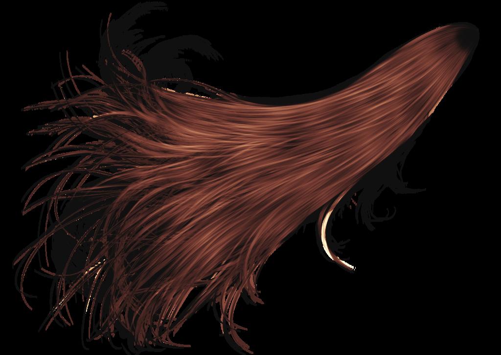 Hellonlegs 81 6 Fantasy Hair 30 By Hellonlegs - Hair PNG