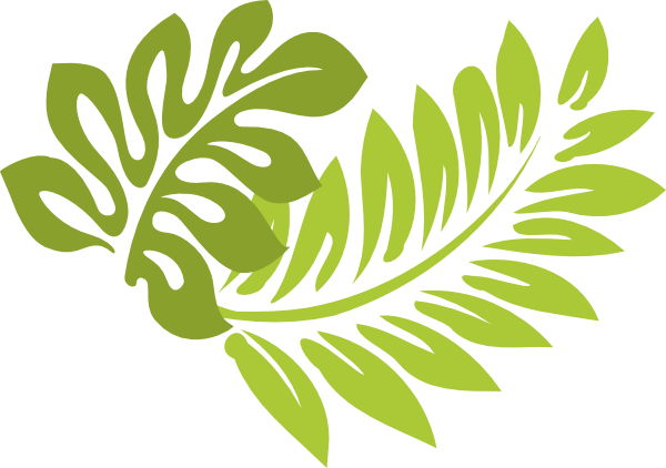 Download This Image As: - Hibiscus Leaf PNG