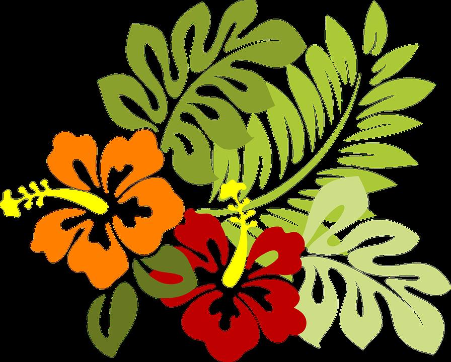 Flower, Tropical, Leaves, Hibiscus, Hawaii, Red, Orange - Hibiscus Leaf PNG