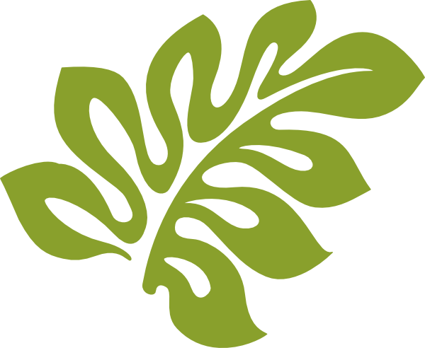 Hibiscus Leaf Clip Art Free. Transparent Background. Can Be Used As  Template Alone Or - Hibiscus Leaf PNG