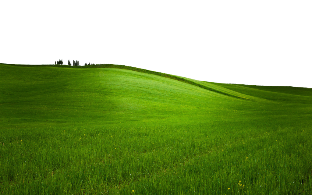 GREEN GRASS PNG - USE ANYWHERE (TRANSPARENT) by TheArtist100 PlusPng.com  - Hill Background PNG