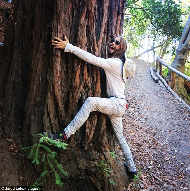 Jared Leto posted yet another tree hugging snap to Instagram - Hippie Tree PNG