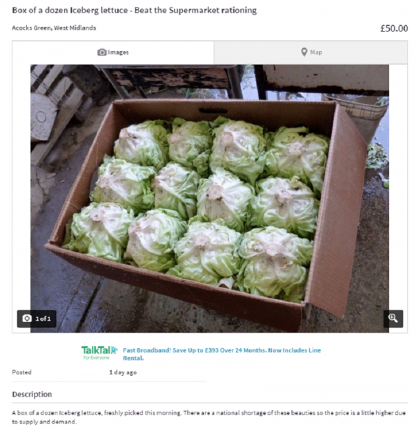 Someone is selling lettuce on Gumtree after the UK is hit by a  #lettucecrisis - Hit Someone PNG