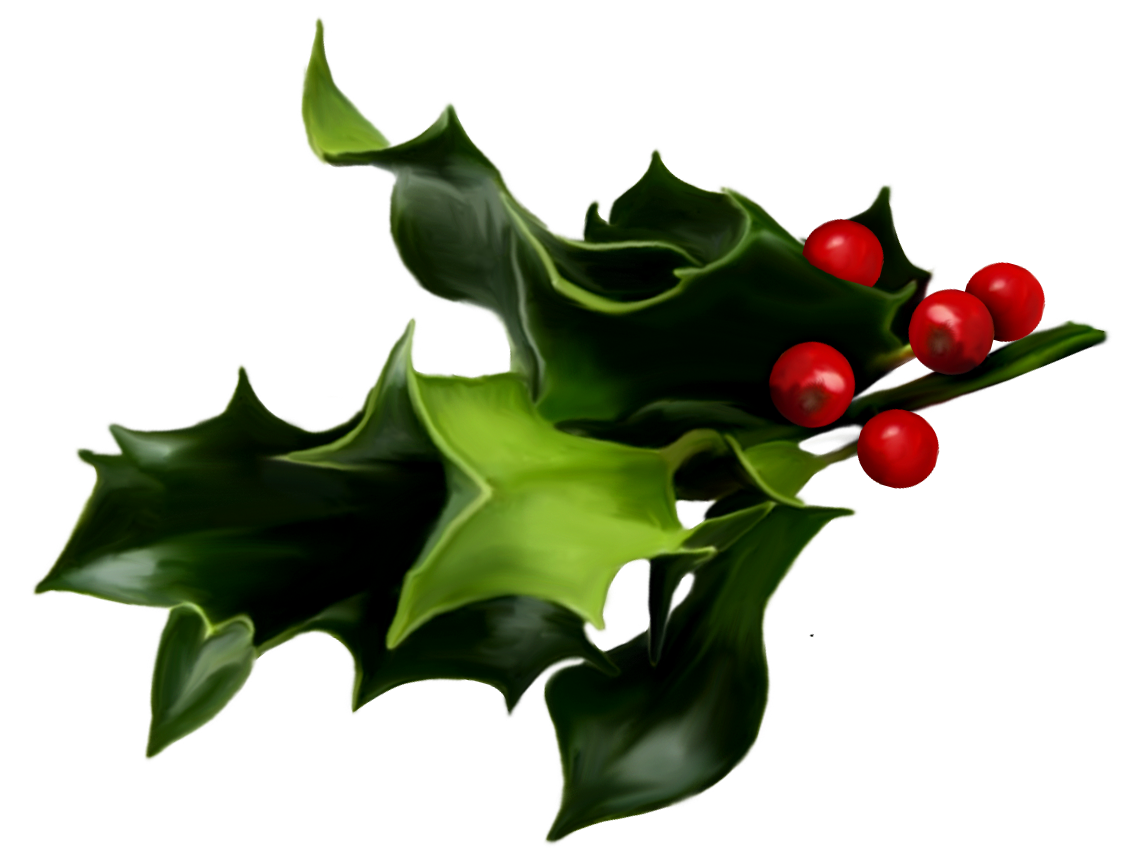 Holly And Ivy PNG - 69913