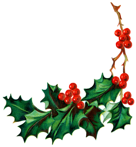 Christmas holly clipart - Holly And Ivy PNG