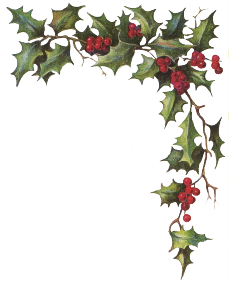 Holly And Ivy PNG
