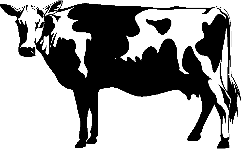 Holstein Cow PNG HD - 131002