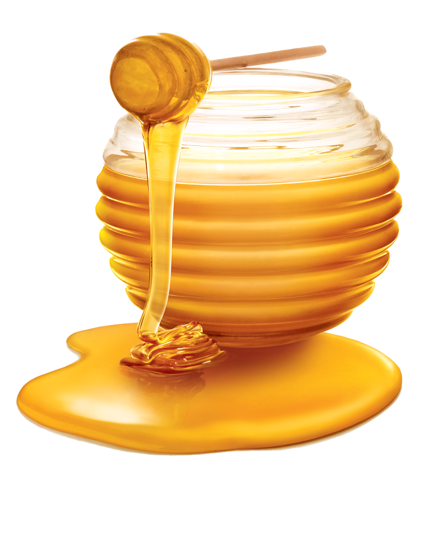 Honey PNG Photos - Honey HD PNG