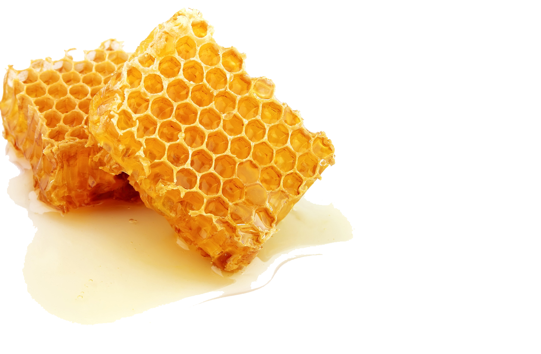Honey clipart transparent #4
