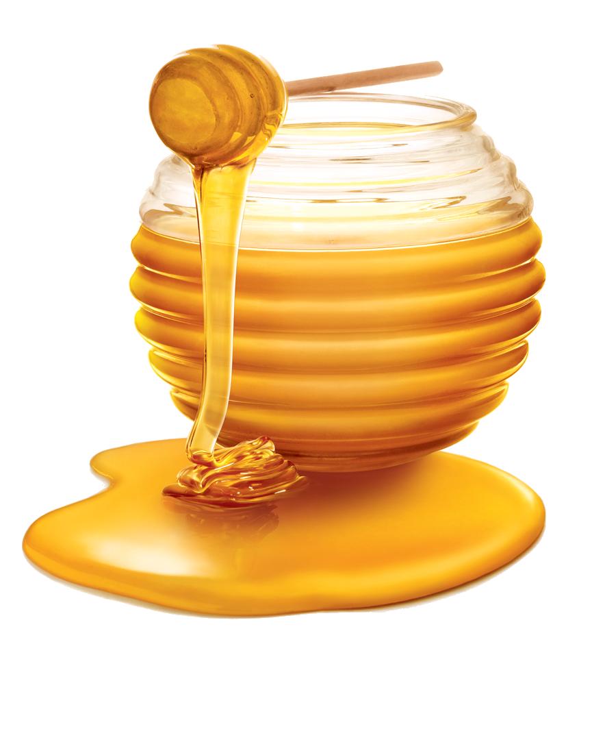 Honey PNG HD