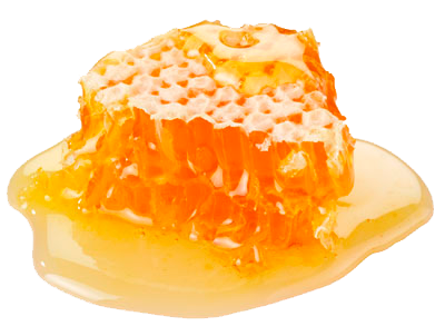 Honey PNG - 26124