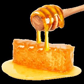 Honey PNG - 26129