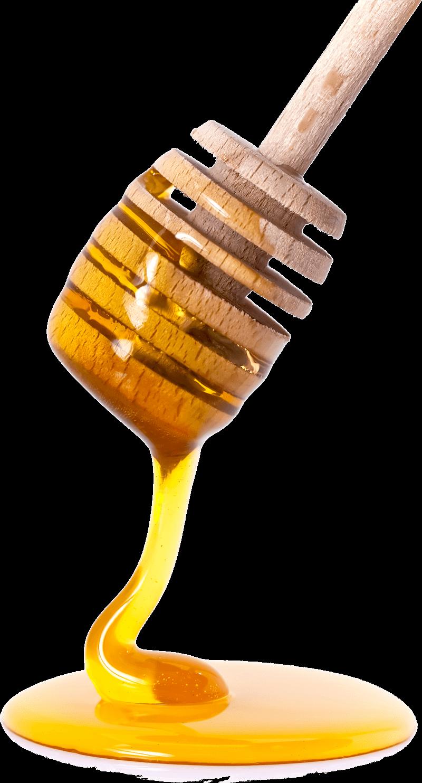 Honey PNG - 26116