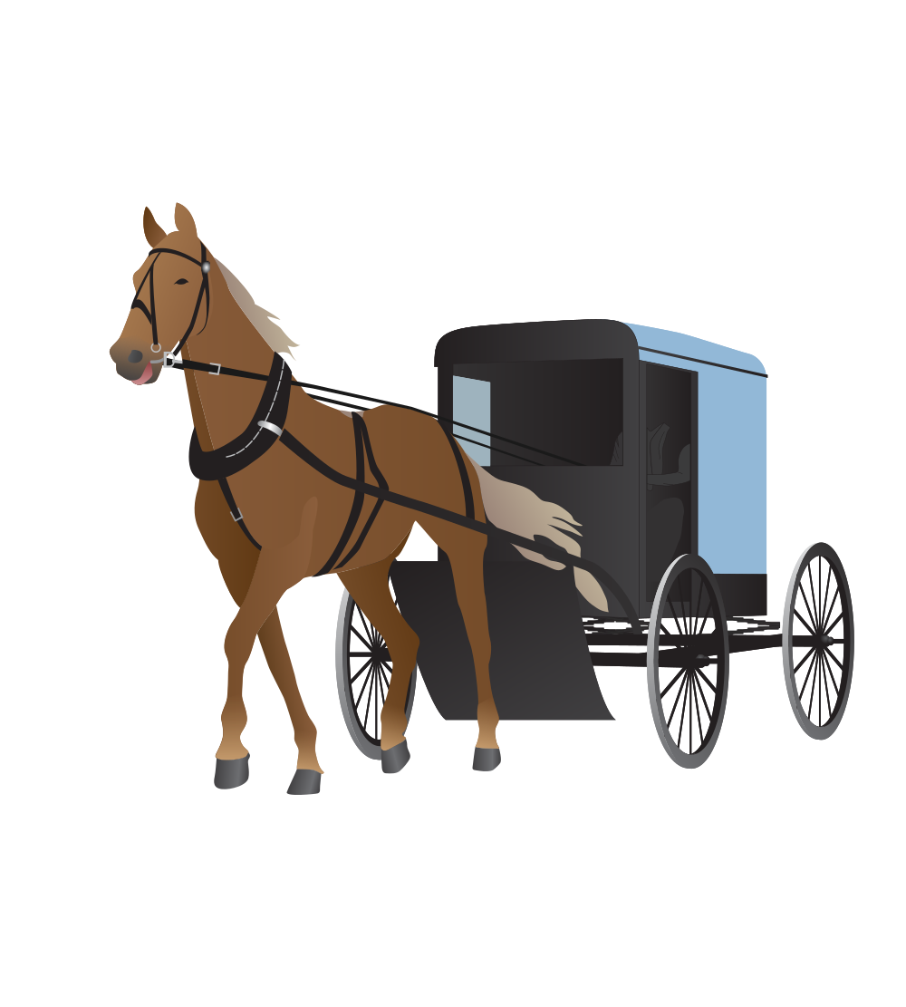 Amish Buggy And Horse - Horse And Buggy PNG
