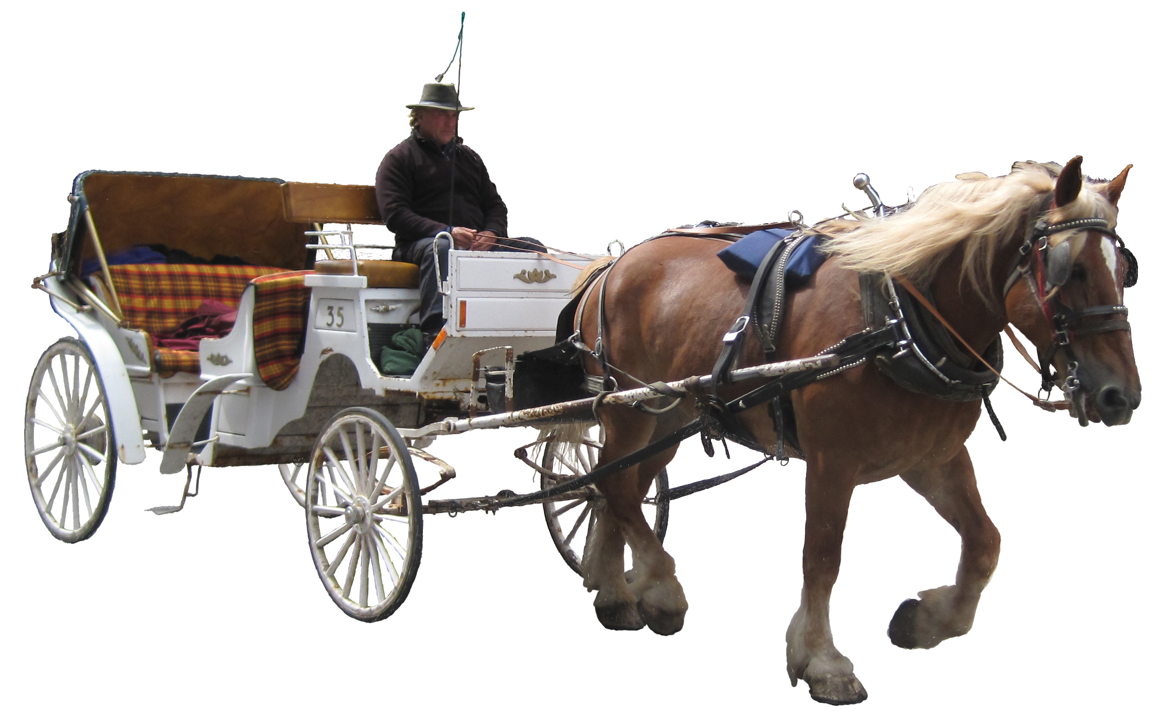 Horse And Buggy PNG - 132917