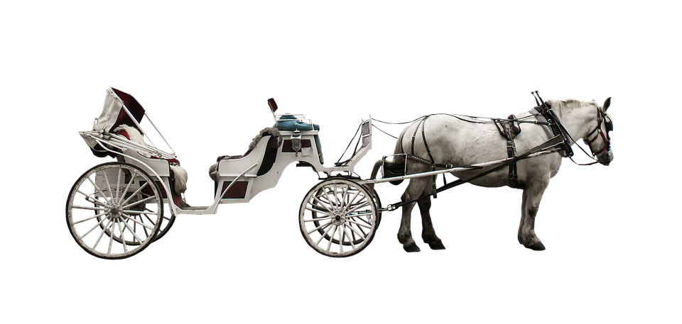 Horse Drawn Carriage, Coach, Traffic, Transport, Horse - Horse And Buggy PNG