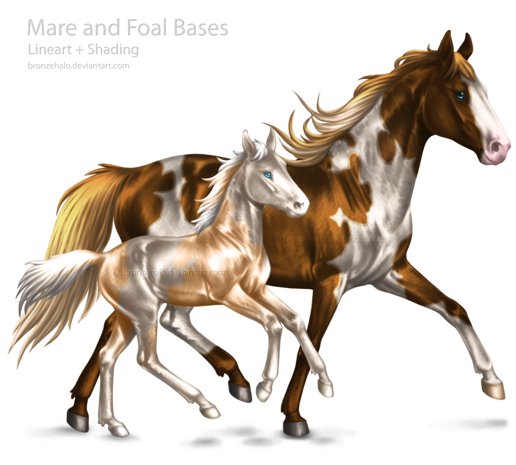Mare and Foal Bases by BronzeHalo Mare and Foal Bases by BronzeHalo - Horse And Foal PNG