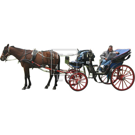 A cutout photo of a man and his bored horse waiting for customers. - Horse Carriage PNG HD