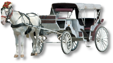 Horse Carriage PNG HD - 127077