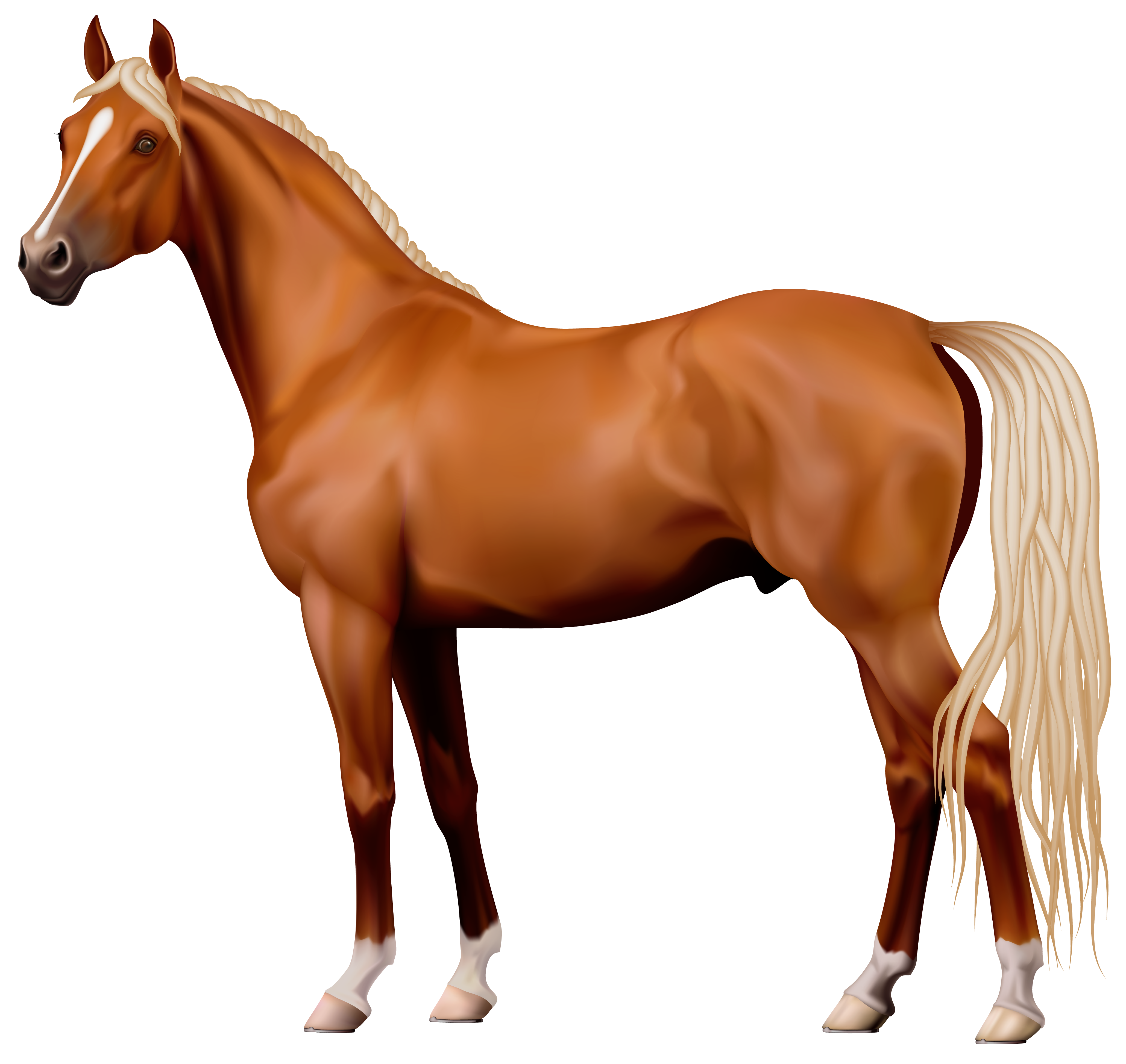 Horse png images - photo#10 - Horse PNG