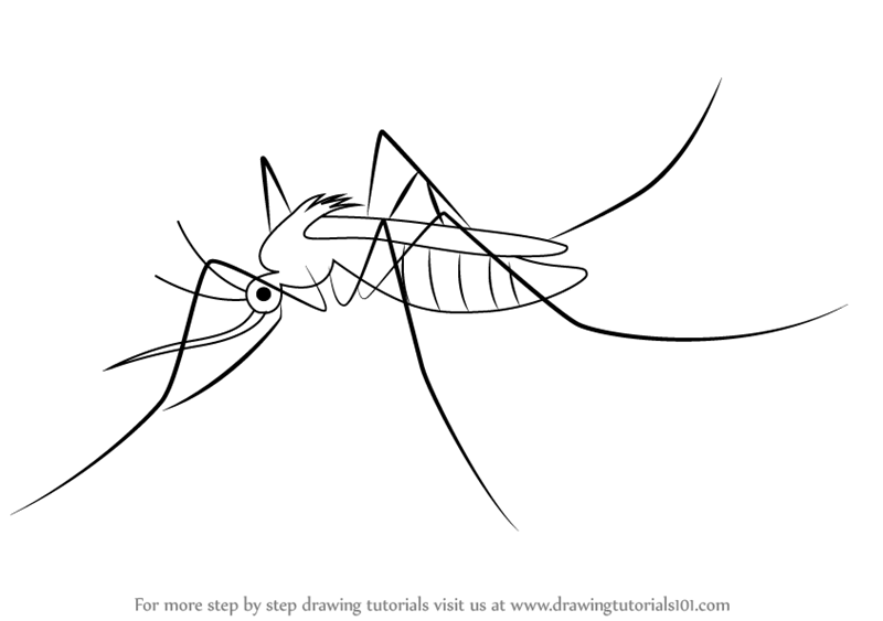 How To Draw PNG - 69292