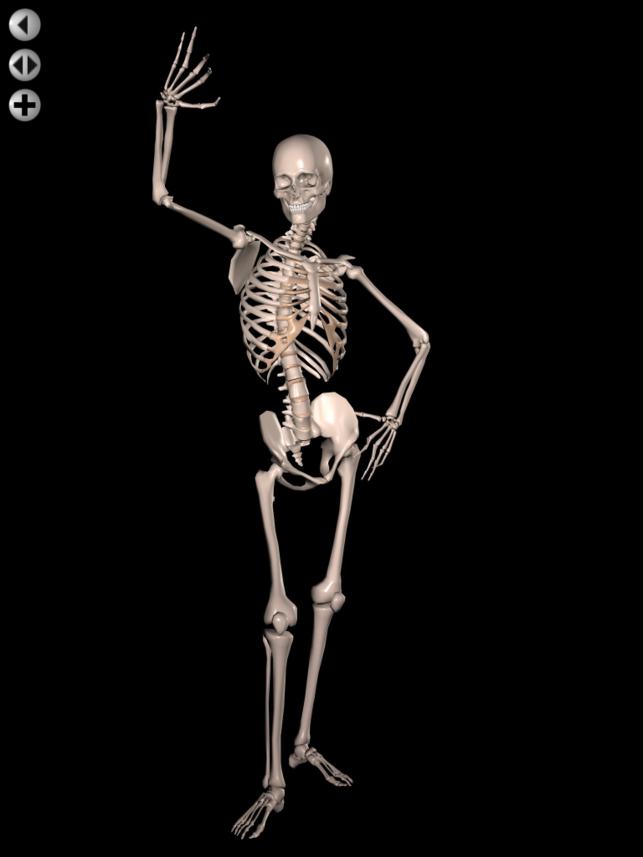 Human Figure PNG HD - 120727