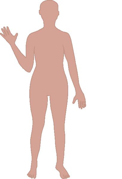 Human Figure PNG HD - 120721