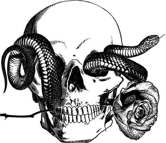 human skull snake tattoo art rose png by DigitalGraphicsShop - Snake Tattoo PNG