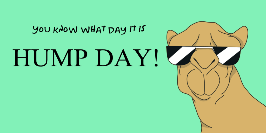 Happy Hump Day! - Hump Day PNG HD