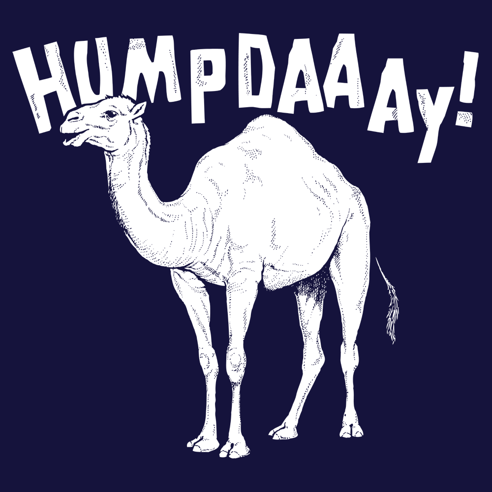 Hump Day! - Hump Day PNG HD
