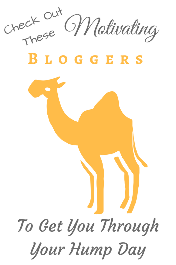 Hump Day Heat! Highlights the amazing work in the finance u0026 blogging  community to get - Hump Day PNG HD