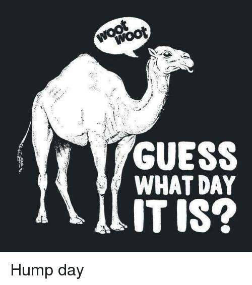 Hump Day, Memes, and Guess: engbot GUESS WHAT DAY ITIS Hump day - Hump Day PNG HD