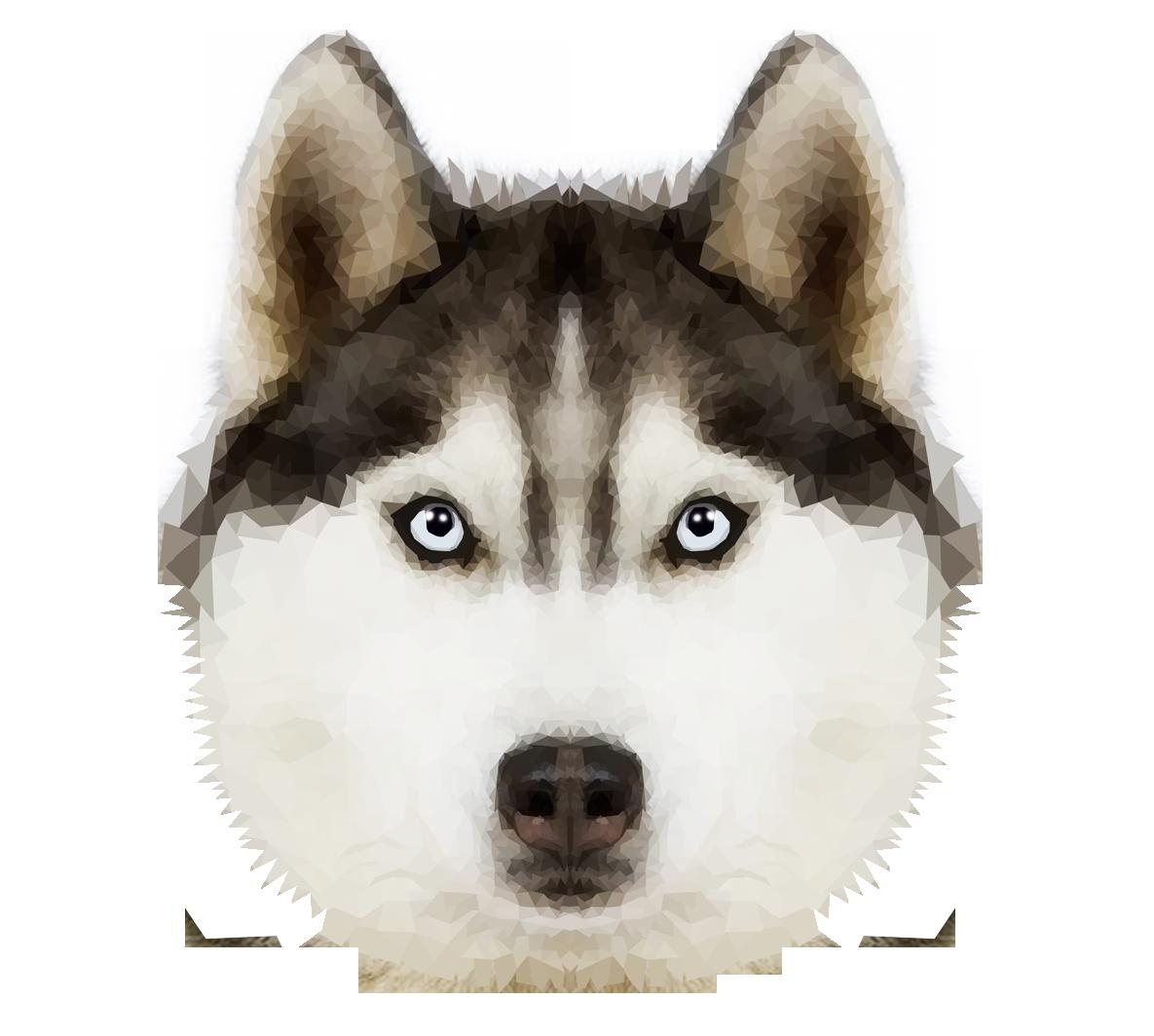 Husky Dog PNG HD - 130229