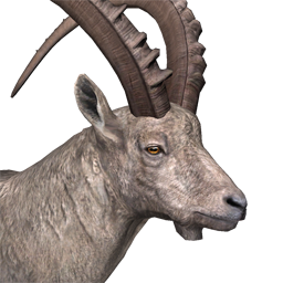 File:Alpine ibex male common.png - Ibex PNG