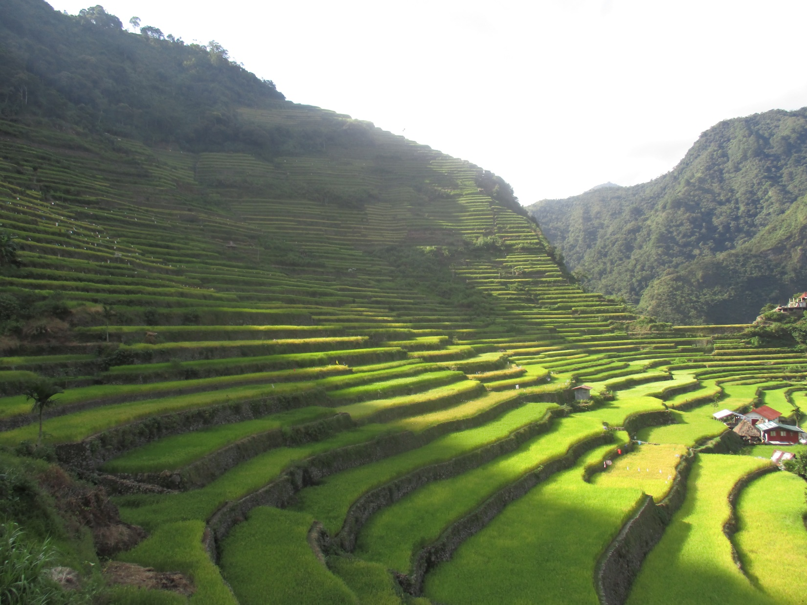 Mid-afternoon at the UNESCO World Heritage Batad Rice Terrace Cluster - Ifugao PNG