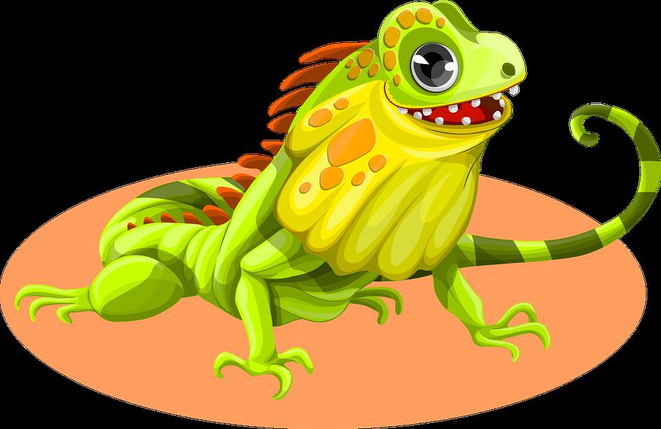 Iguana PNG - 23369